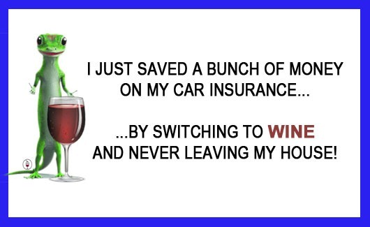Funny Wine Meme Pics : Insurance jase and jax s